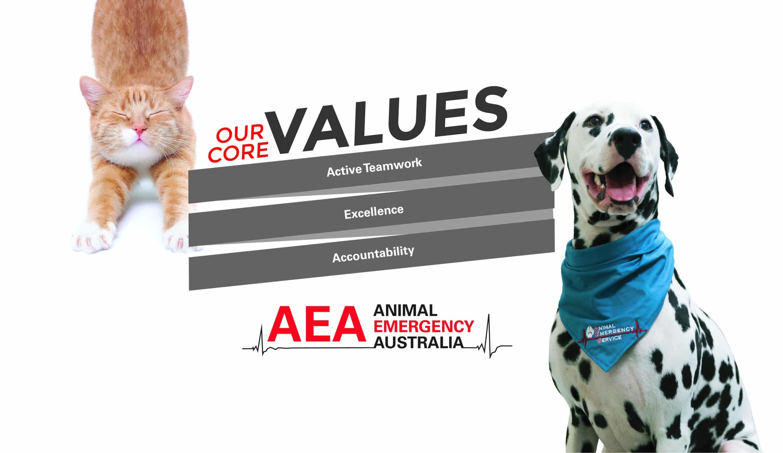 AEA Core Values Univers